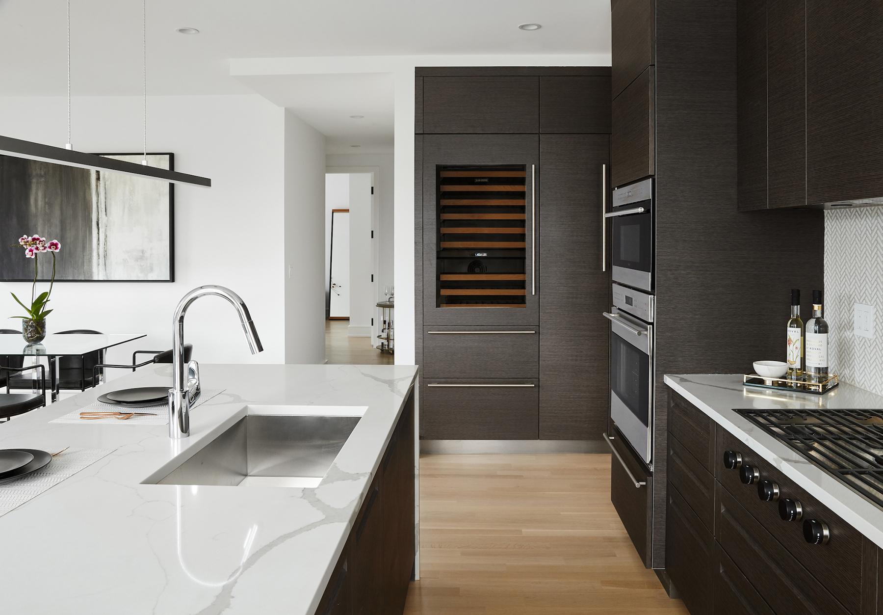 Lincoln Park Luxury Apartment Interior